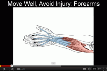 Move Well, Avoid Injury: Forearms