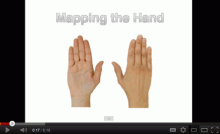 Move Well, Avoid Injury: Hands