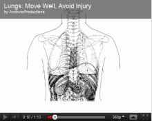 Move Well, Avoid Injury: Lungs